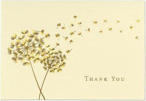 Dandelion Wishes Thankyou Notecards