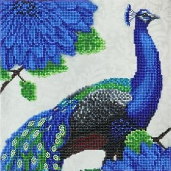 Flowering Peacock 30x30cm Crystal Art Kit