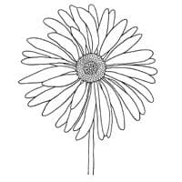 Gerbera Clear Woodware Stamp