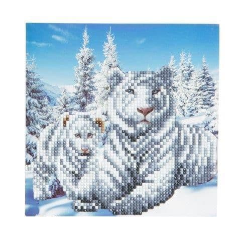 Snowy White Tigers Crystal Art Card Kit
