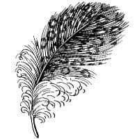 Spotted Feather Stampendous Cling Stamp