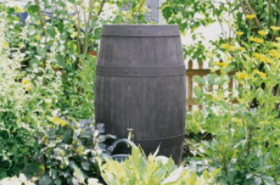 Barrique Water Butt – 250 Litres  FREE DELIVERY