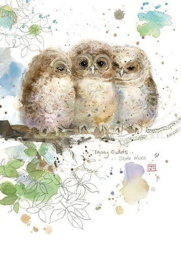 Bug Art Three Owlets Greetings Card