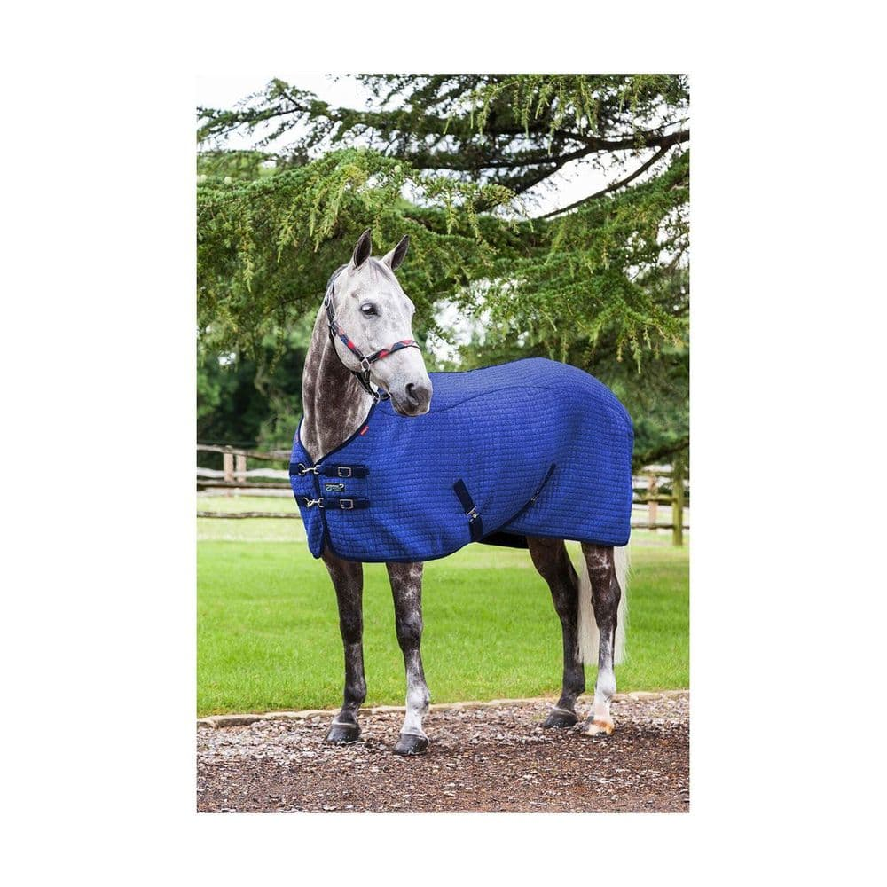 Benneton Blue  LeMieux Thermo-Cool Rug