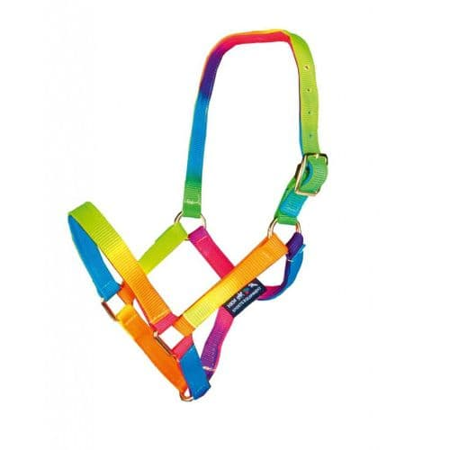 HKM Multicolour Head Collar & Lead Rope Set