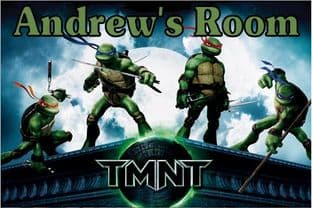 Personalised Teenage Mutant Ninja Turtles Door Plaque