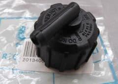 Genuine LEM LX2 RX2 RX65 Coolant radiator Pressure Cap 2013400445/1