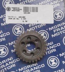 Genuine Morini Franco Motori G30 2nd Gear Pinion 18.1164