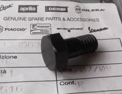 Genuine Moto Guzzi Bevel Gear Bolt GU12356300