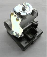 Peugeot Django 150 Throttle Body / ECU PE803819