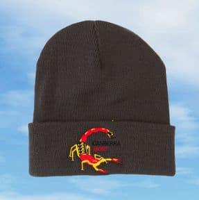 Scorpion Canberra WK163 beanie (Grey)